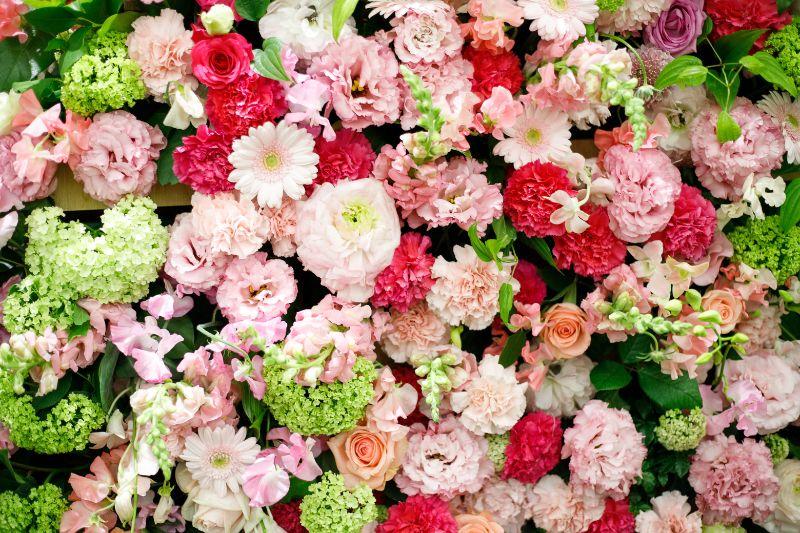 花 たくさん